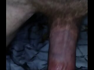 epigrammatic lil hairy pussy